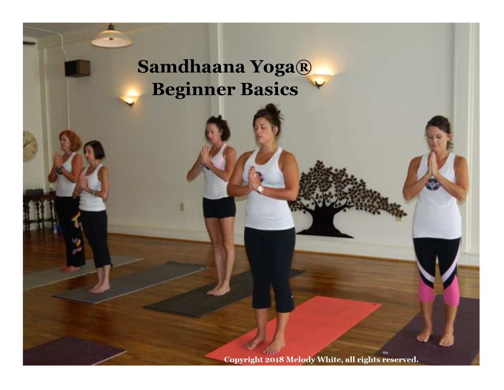 samdhaana_beginner_basics