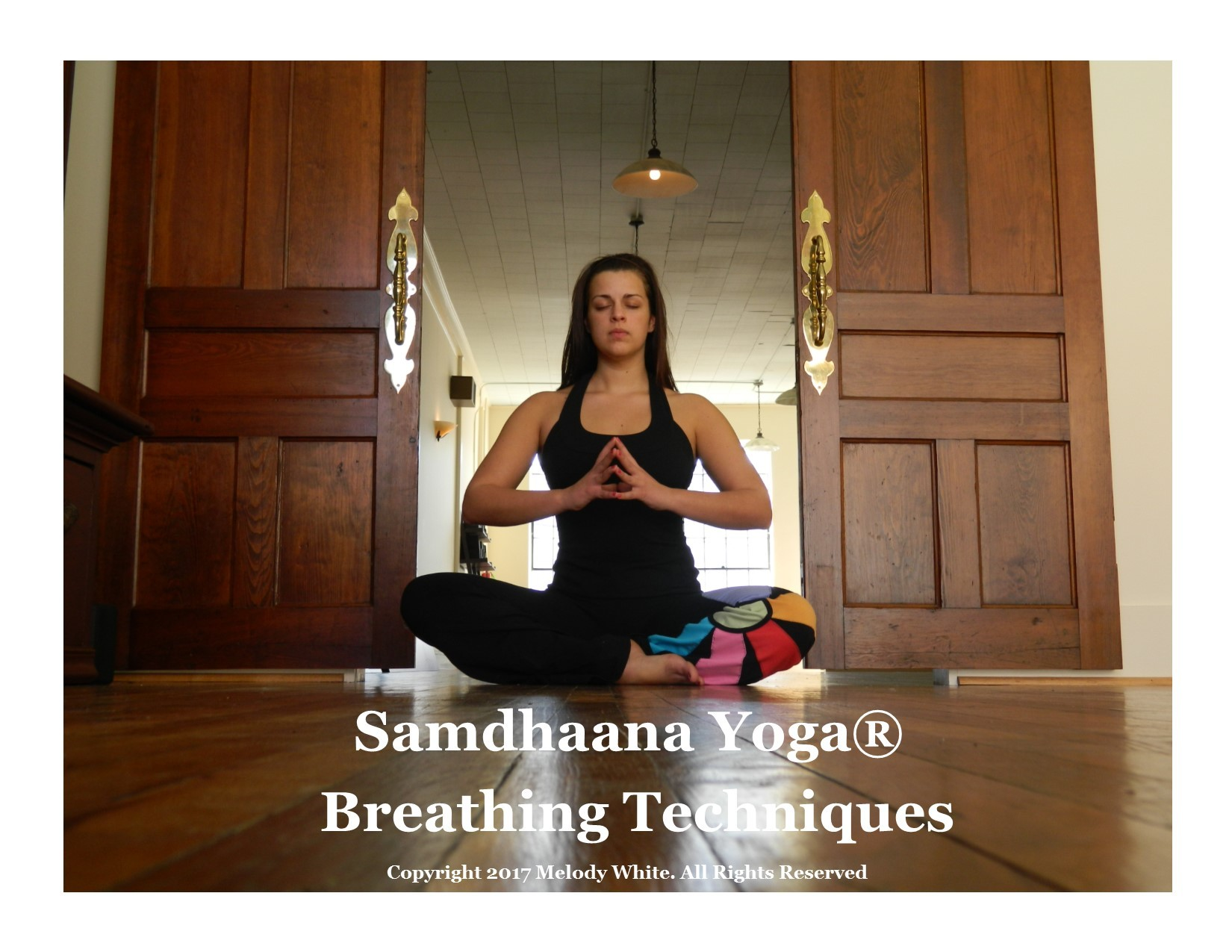 Samdhaana Prana & Apana Building Breath