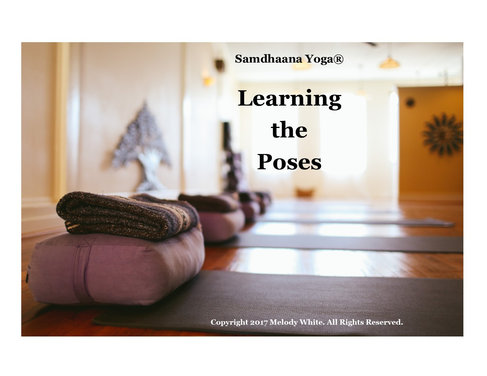 samdhaana yoga learn the poses